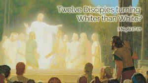 12 Desciples Turning Whiter than White